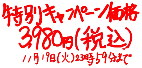 ビジネスYouTube・特別価格11月19日.PNG